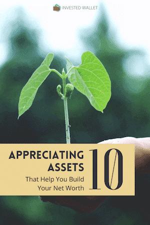Examples of Appreciating Assets