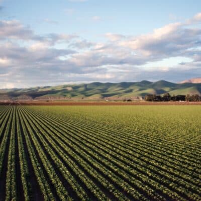 Is Farmland A Good investment? How You Can Get Started