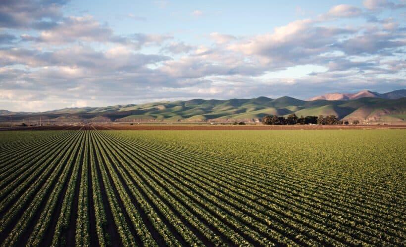 Farmland Investments